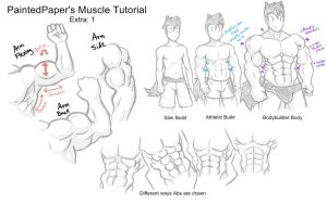 Big Muscles Tutorial - Extra by paintedpaper