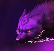 Purple Haze by falvie