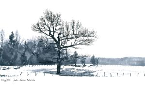 Reproduction - The tree 12 by AntoineRozel