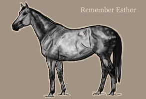 Remember Esther by Geronimo24