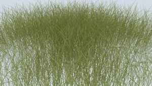 Animated and realistic Grass (V-ray) by iDesign313