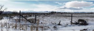Desolate Panorama by loathsome-weasel