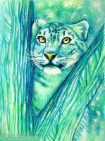 Snow Leopard by Nicole-Marie-Walker