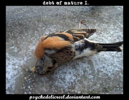 debt of nature I. by psychedelicreel
