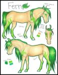 - Fern Reference by CatcherOfDreamss