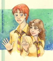 RON and Hermione by mary-dreams