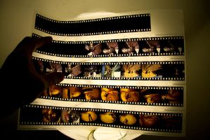 35mm Slide by Tezamistic