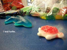 I Eat Turtle by jeane