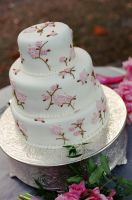 Cherry blossom wedding cake by ncspurlin
