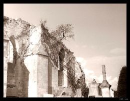 Church in ruins 2 by clairwitch