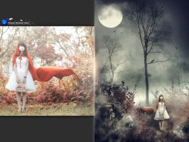 Red Riding Hood I Before and After by Hoangvanvan