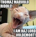 Lolcat: Thomaz Marvolo Riddle by WhyMe777x