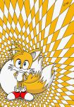 Tails by EUAN-THE-ECHIDHOG