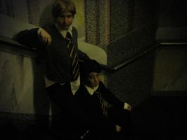 HP - Harry and Ron by Nephrae