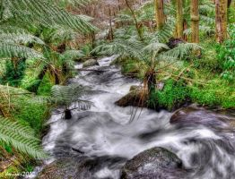 Waterfalls-Marysville 2 HDR V by DanielleMiner
