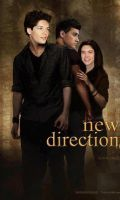 New direction by 1Dzaynharry