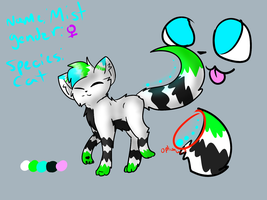 Mist 2013 Reference by TabbyFeather