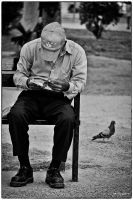 The old man and the pigeon by jazzypao