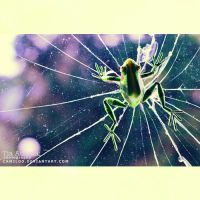 frogderweb. by Camiloo
