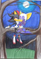Shadow x Rouge by NaomiNerd