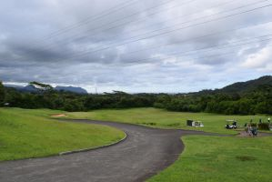 Hawaiian Golf Course by annonmyous