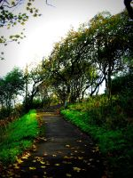 Autumn Walkway by Lady---Vengeance