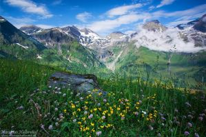 Alpine Summer by MatthiasHaltenhof