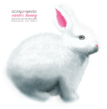 Easter bunny png by iamszissz