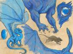 Young Saphira by elmwile