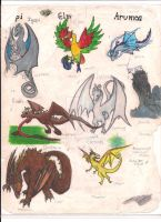 The First Dragon Heirarchy by zenevaydragon973