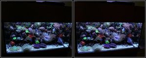 larger view of Marine tank by zippy6234