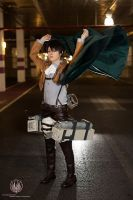 Attack on Titan - Cloaks On! by faramon