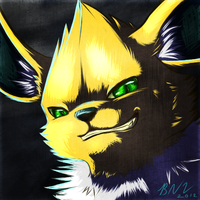 Valin the Jolteon by PrinceofPride