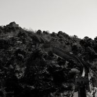 Great Wall by RenenViola
