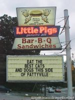 BBQ SIGN by Eeveeisgerman