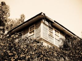 Old House by Sonia-Rebelo