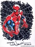 Spider-Man YouTube speed drawing series 2013 by ToddNauck