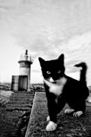 lighthouse keeper ... by kapt73