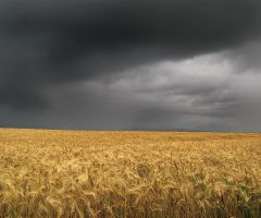 Harvesting the Storm 2 by Robert-Lazar