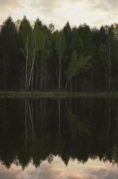 silent waters II by Topielica666