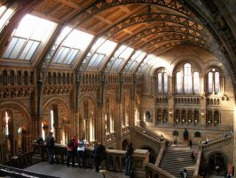 Natural History Museum by Jupis