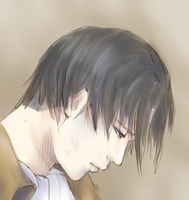Levi by maicafee