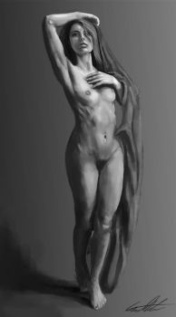 Female Nude Study #4 by TheSilentDane