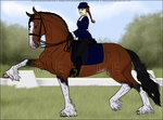 HP Dressage Clydesdale by xsoulstar