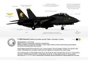 Golden Eagles F-14M reference sheet by Illusir