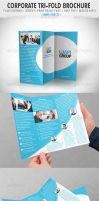 Corporate Tri-fold Brochure by vitalyvelygo