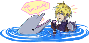 MR DOLPHIN by Ahvia
