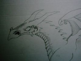 Another Dragon by Changeling007