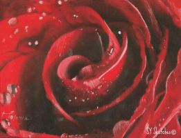 Rose-Charcoal on red tinted paper by syart