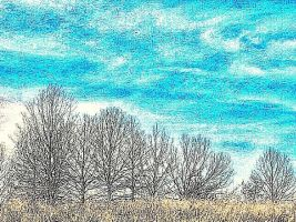 Sky and Trees by wdlougee